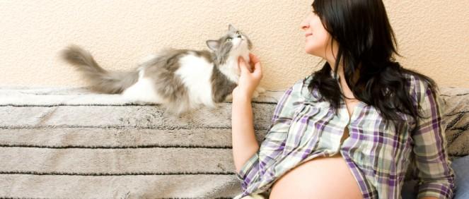 Kość nosowa (NB) - Diagnostyka prenatalna I trymestru ciąży
