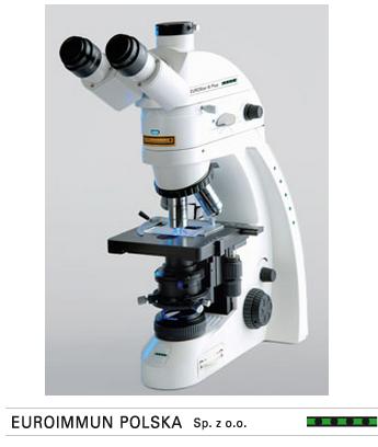 mikroskop euroimmun z logo
